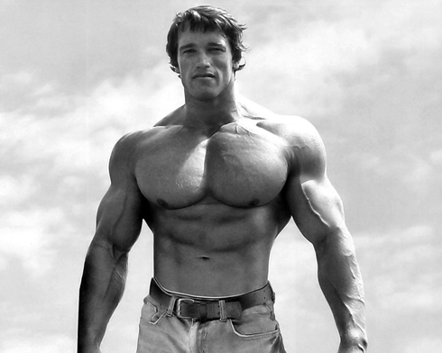 arnold schwarzenegger on the best shape of his life with huge chest and arms